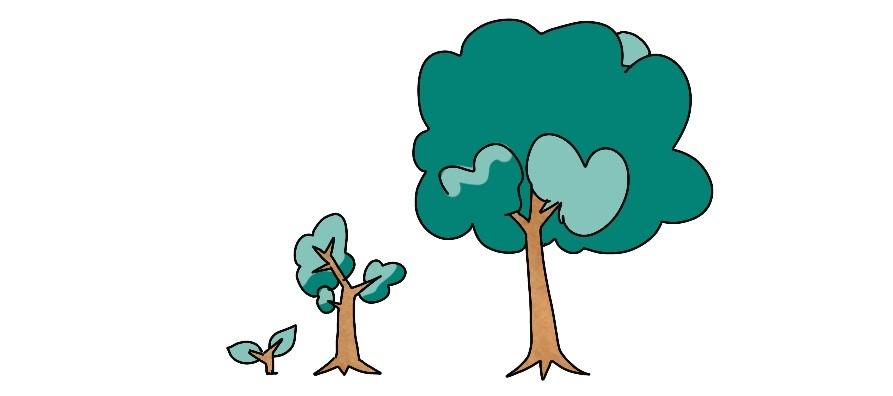 Bomen als metafoor bij bespreken van ontwikkeling